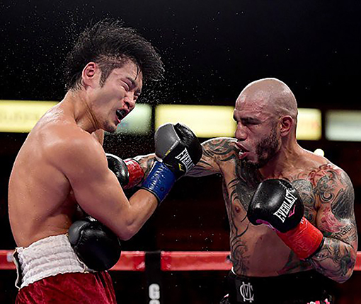 Kamegai (left) and Cotto (right)