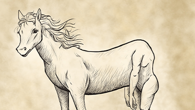 The reverse centaur illustration